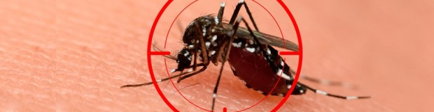 Zika Update: New Study Supports Biological Link Between Zika Infection, Guillain-Barré Syndrome